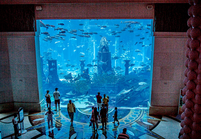 Аквариум в Atlantis The Palm